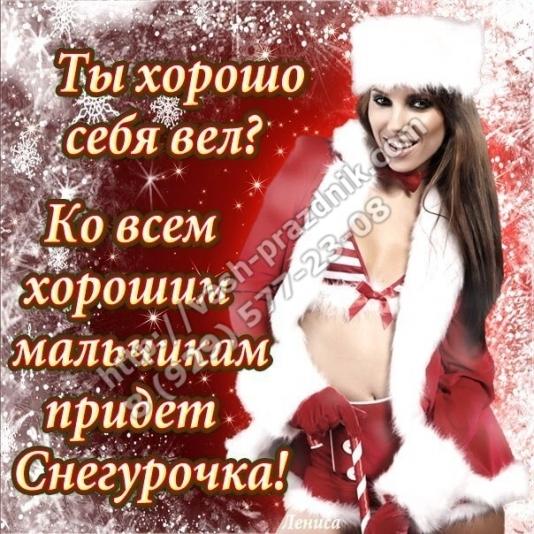 odna-devushka-i-kucha-chlenov