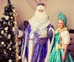 Дед Мороз Железнодорожный
