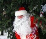 Дед Мороз в детский сад Долгопрудный