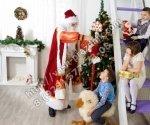 Дед Мороз в детский сад Солнечногорск